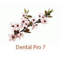 Dental Pro 7 inside on Pockets