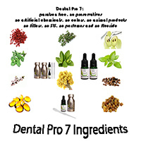 Best Dental Pro 7 For The Money