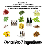 Eleven Natural Ingredients of Dental Pro 7 – Eliminate the harmful bacteria